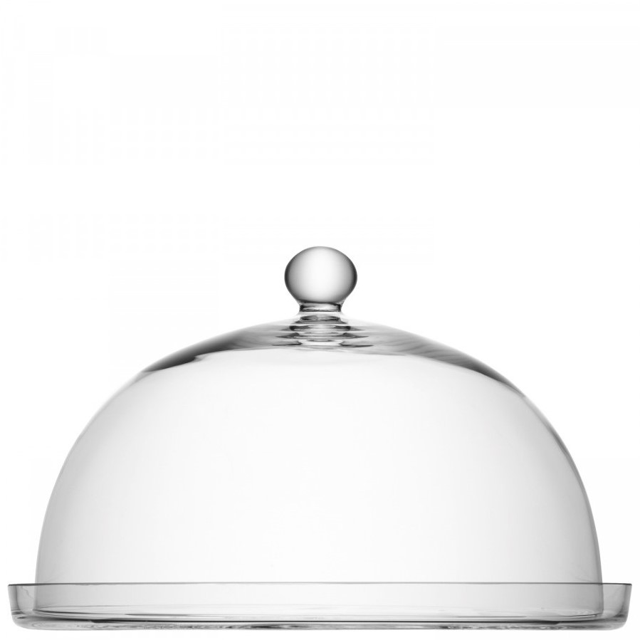 LSA Vienna - Dome and plate #1